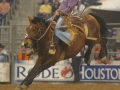 rodeo-houston