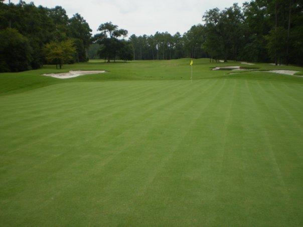 longwood golf 2